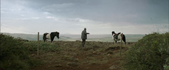 Of_Horses_and_Men_still3